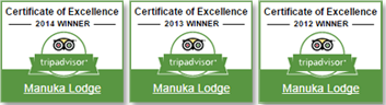 Trip advisor certificates of excellence